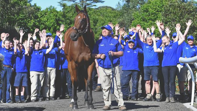 Godolphin has locked in Alizee for its Everest slot. Picture: Lisa Grimm