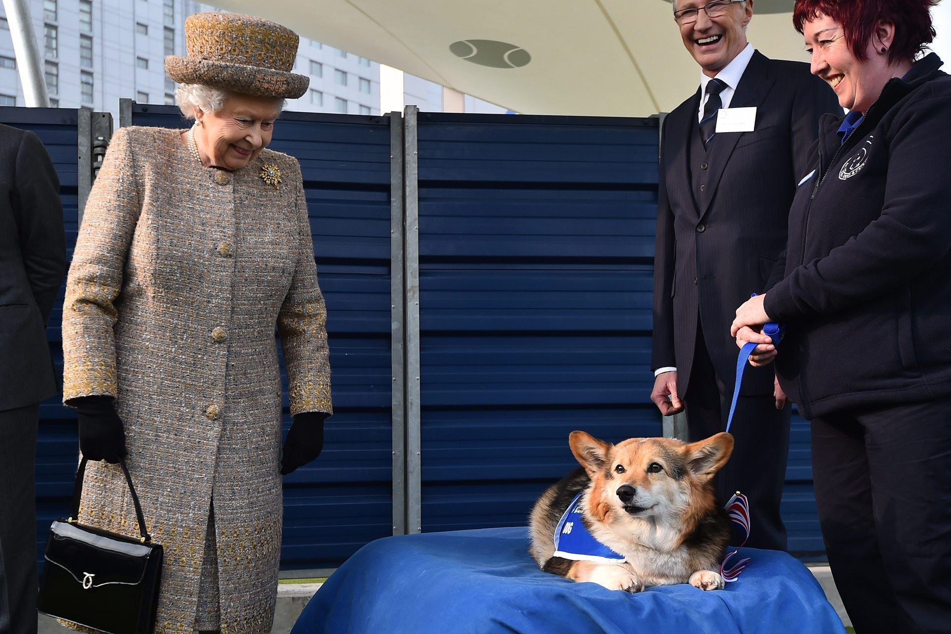 Queen Elizabeth II's last remaining corgi has died