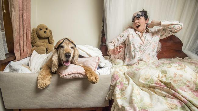 Elyan Shotbolt-Havoc with her dog, George and a custom-made dog bed. Picture: Jason Edwards