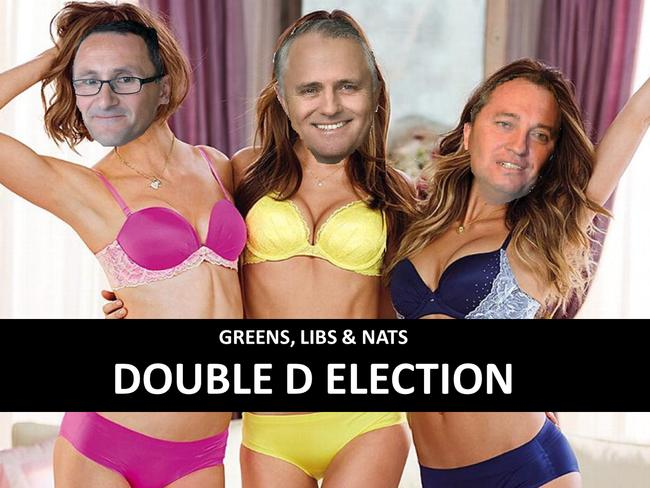 """Jacqui Lambie's weird artistic impression of a """"double d election""""."""