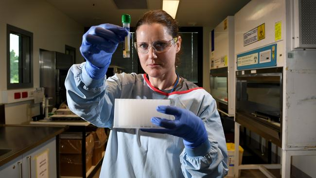 SA Pathology medical scientist Kristy Robinson prepares a deactivated specimen of coronavirus for testing in the virology lab at the RAH. Picture: Tricia Watkinson