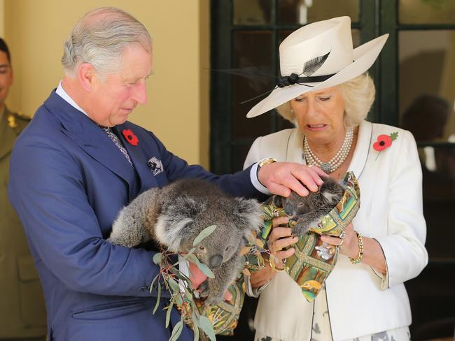 Prince Charles tries to convince Camilla that koalas really are cute and fluffy at Government House in Adelaide back in 2012. They were in Australia as part of a Diamond Jubilee celebration. Picture: Chris Jackson/Getty Images