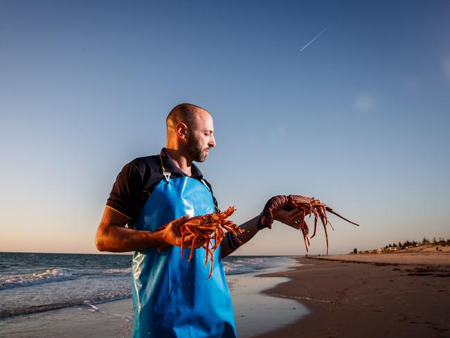 """The benefits of buying seafood from SA's clean waters cannot be underestimated"" says Stavros Parissos of Parissos Seafoods. Photo: Matt Turner"