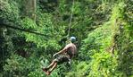 A tourist died in Thailand when the cable of the zipline he was riding snapped. Picture: @flightofthegibbon