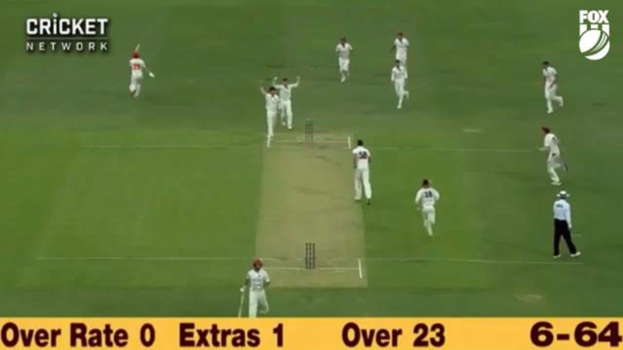17 wickets of Shield carnage