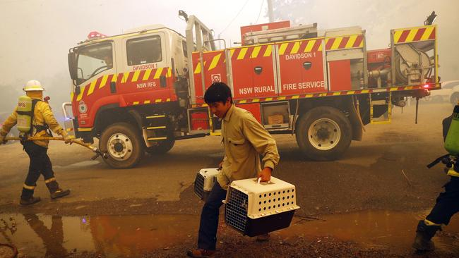 A man carrying animals makes a last minute escape from Balmoral in south western Sydney as bushfires destroy homes in the area. Picture: Sam Ruttyn